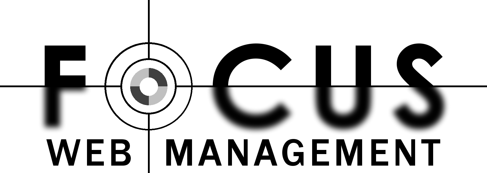 Focus Web Management